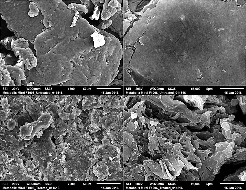 Frontiers | Pretreatment and Anaerobic Co-digestion of Selected PHB
