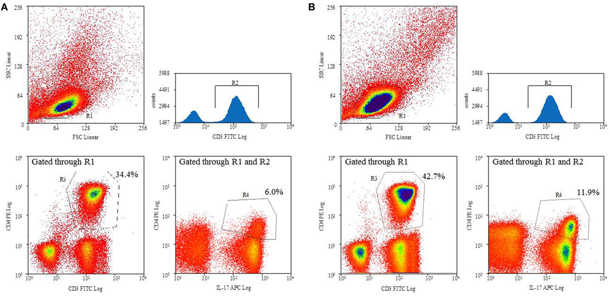 Frontiers | TH17 Cell Frequency in Peripheral Blood Is Elevated in ...