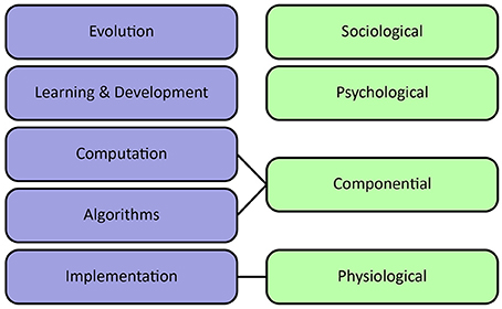 Frontiers | Computational Foundations of Natural
