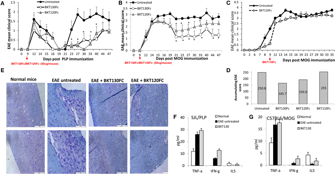 Frontiers | Development of Novel Promiscuous Anti-Chemokine