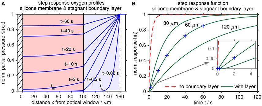 Frontiers   Oxygen Optode Sensors: Principle