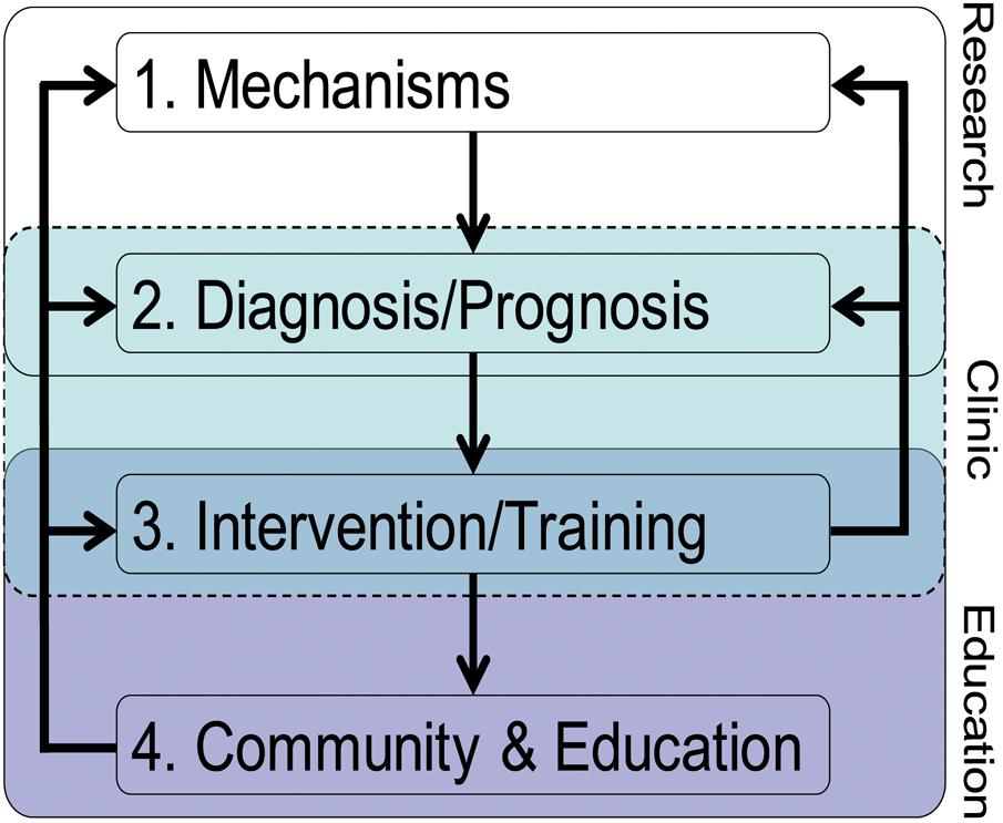 Frontiers | A Translational Framework of Educational