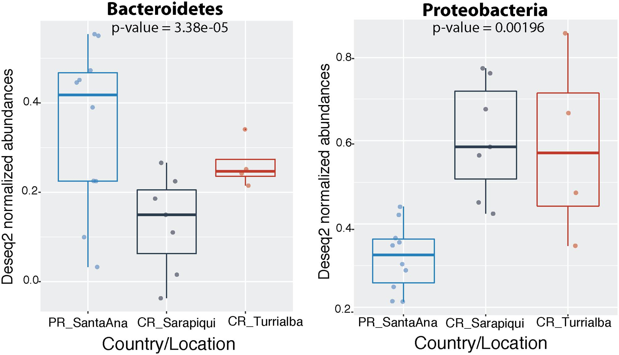 Frontiers   Characterization of the Skin Microbiota of the