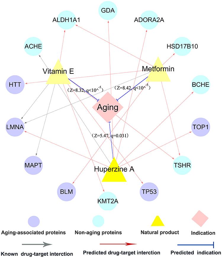 Frontiers   Quantitative and Systems Pharmacology 3  Network-Based