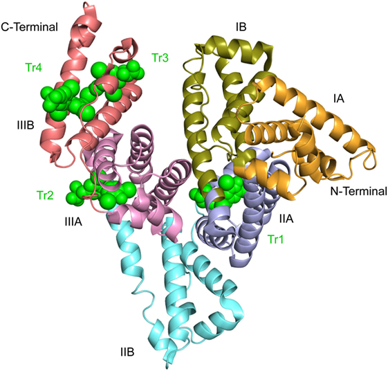 Clinical, Genetic, And Protein Structural