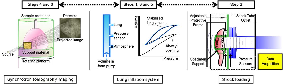 A cluster of lung injury associated with home humidifier use