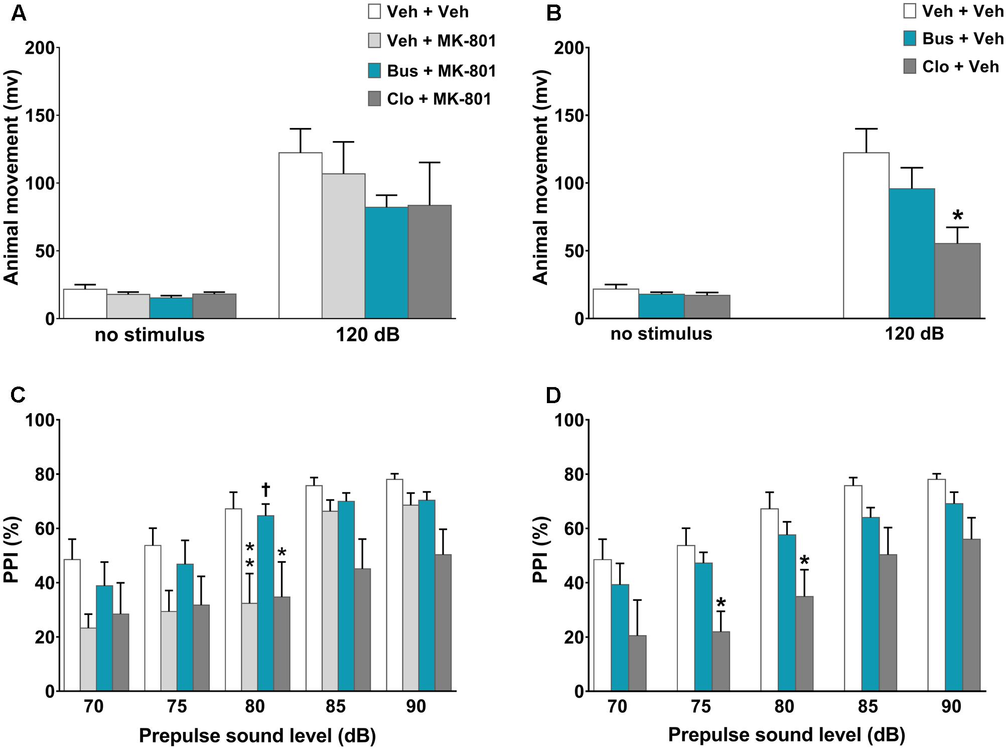 Frontiers | Buspirone Counteracts MK-801-Induced