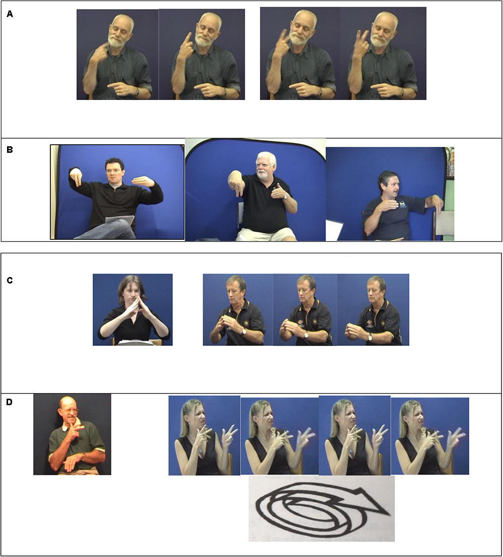 Frontiers | Sociolinguistic Typology and Sign Languages | Psychology