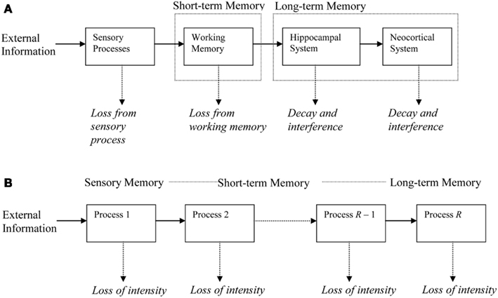 identification and description of each step in the human memory model The memory jogger [ref 1, p 28] this diagram has been broken down into its  draw a box around the description of the effect step 3 - identify the main causes contributing to the effect being studied  step 4 - for each major branch, identify other specific factors which may be the causes of the effect [ref 5,.