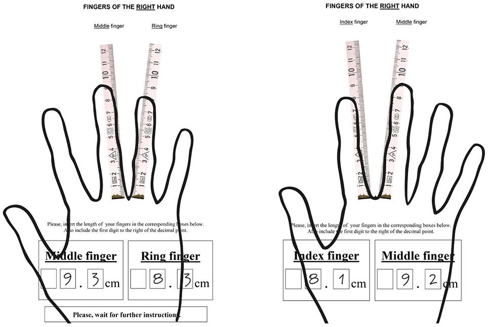 Finger Digit Diagram - Electrical Work Wiring Diagram •
