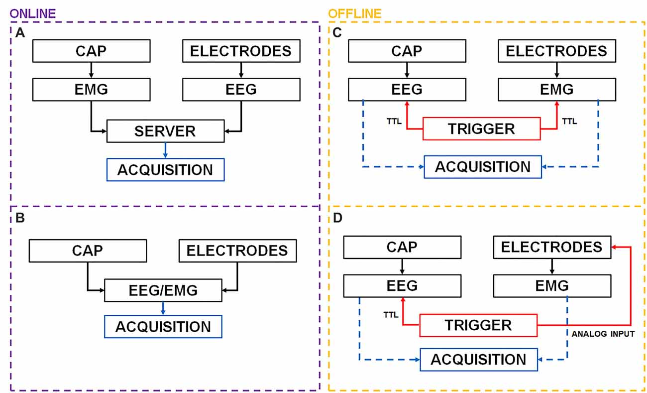 Frontiers Effective Synchronization Of Eeg And Emg For Mobile Bts System Wiring Diagram