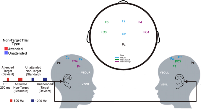 Frontiers | Frontal EEG/ERP correlates of attentional