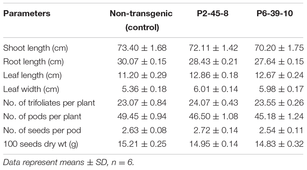 Frontiers | Development and Evaluation of Low Phytic Acid