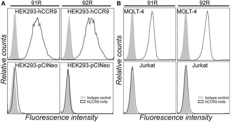 Frontiers92r Human Ccr9Leukemia Inhibits Monoclonal Antibody 6yIYfb7gv