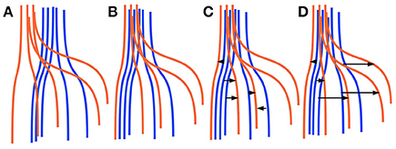 Frontiers | White Matter Tract Segmentation as Multiple