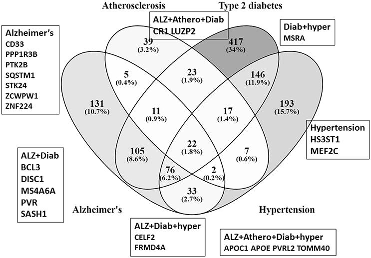 Type One And Type Two Diabetes Venn Diagram Ukrandiffusion
