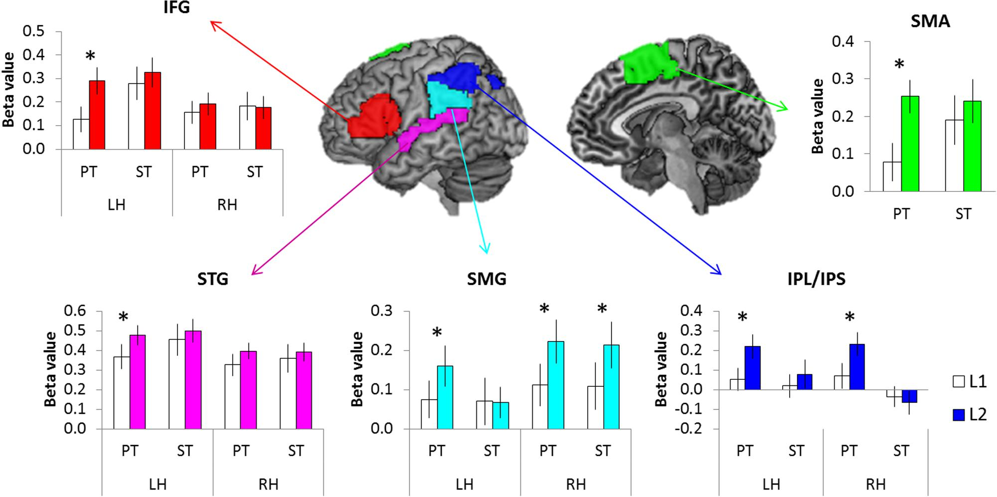 Frontiers | Mapping the Neural Dynamics of Korean–English