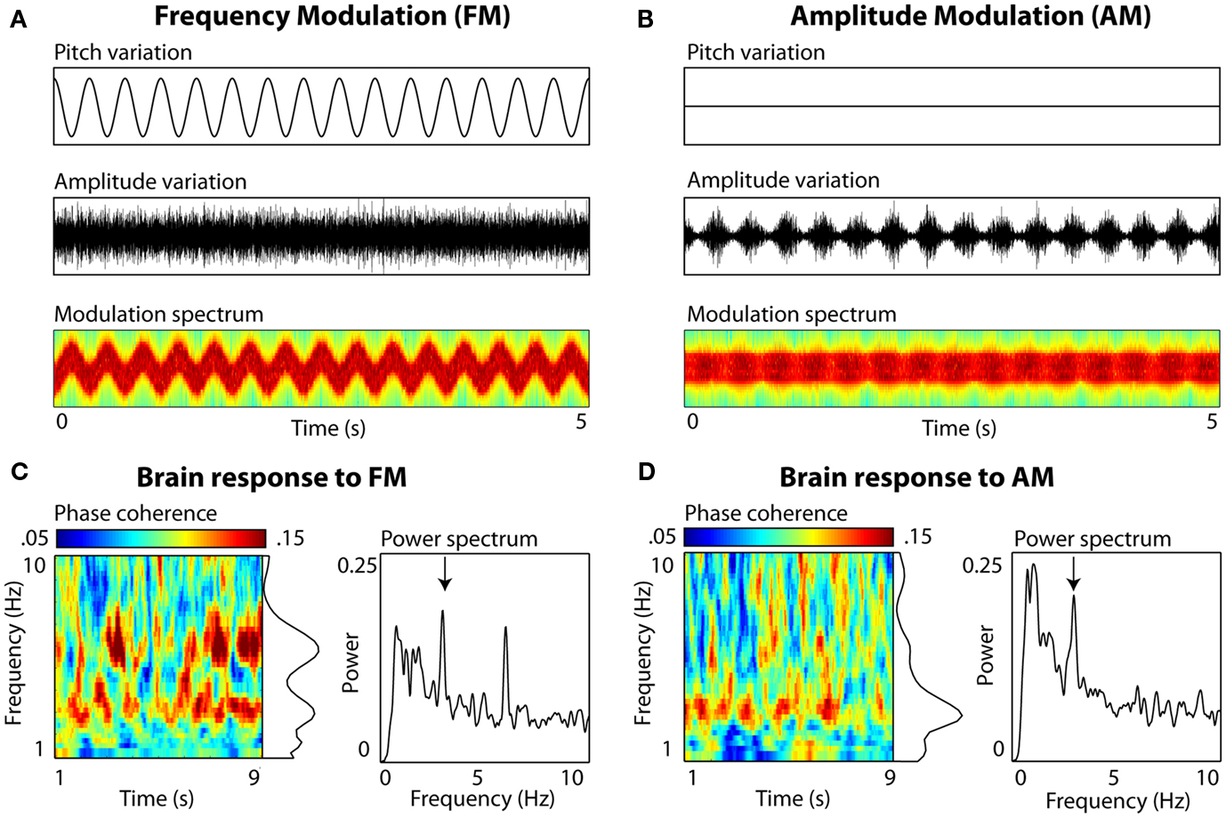 Frontiers | Neural Oscillations in Speech: Don't be Enslaved