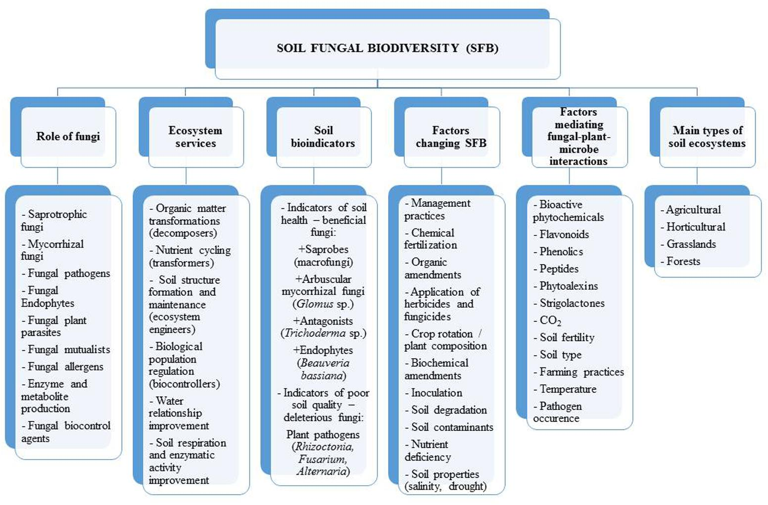 Frontiers | Fungal Biodiversity and Their Role in Soil Health