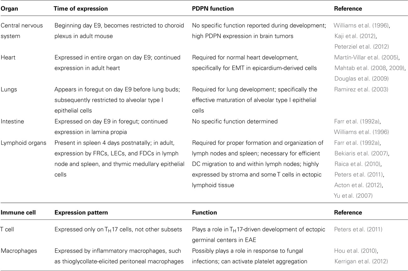 Frontiers Podoplanin Emerging Functions In Development The