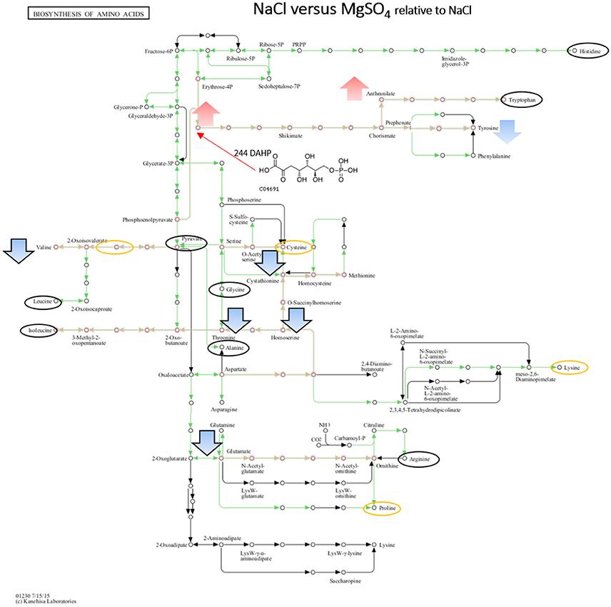 Nett Furt Fluchtmotor Schaltplan Fotos - Elektrische Schaltplan ...