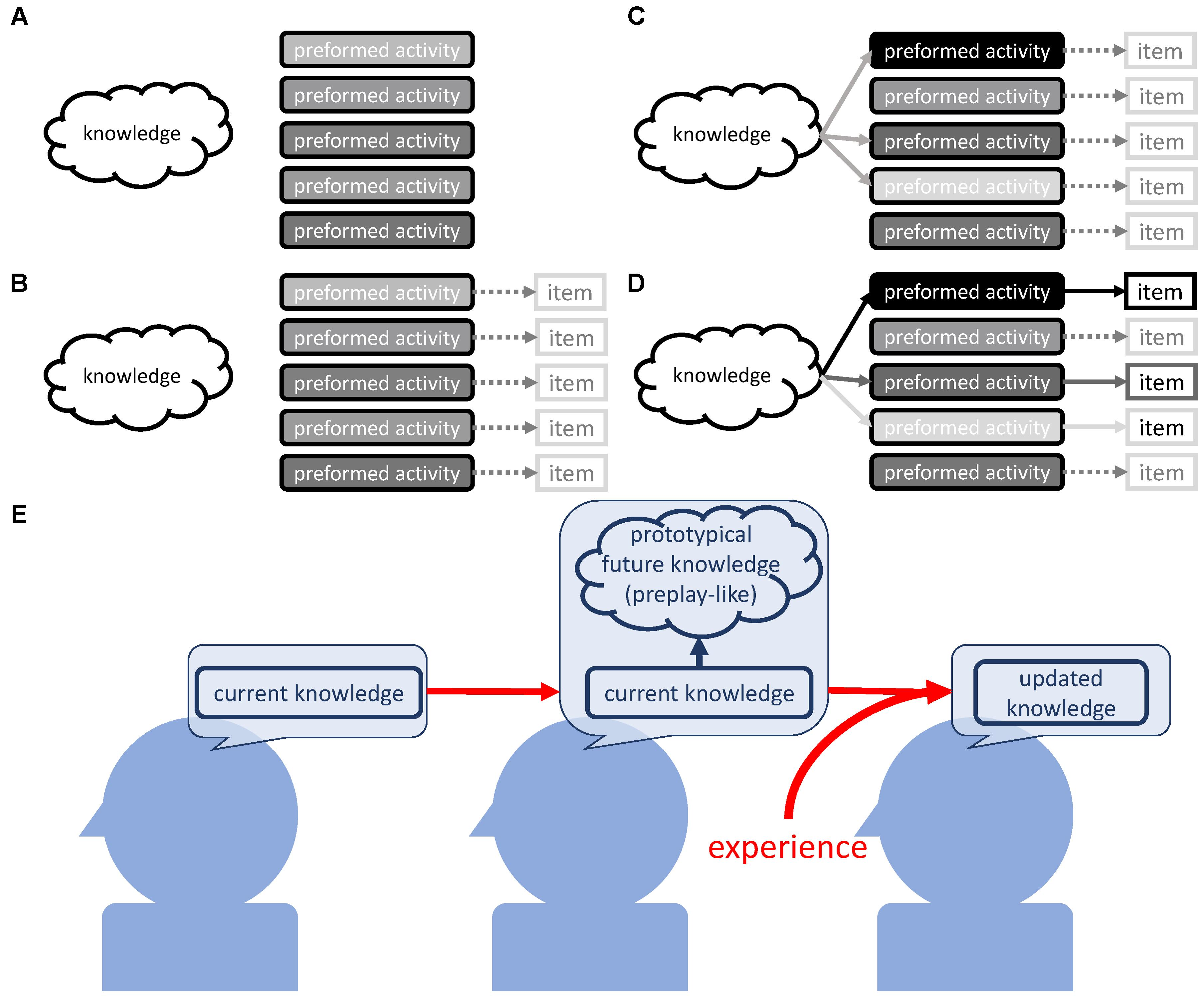 Frontiers A Knowledge Based Arrangement Of Prototypical Neural 2009 Honda Recon Wiring Diagram