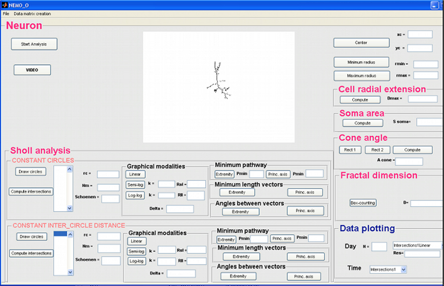 Frontiers | NEuronMOrphological analysis tool: open-source