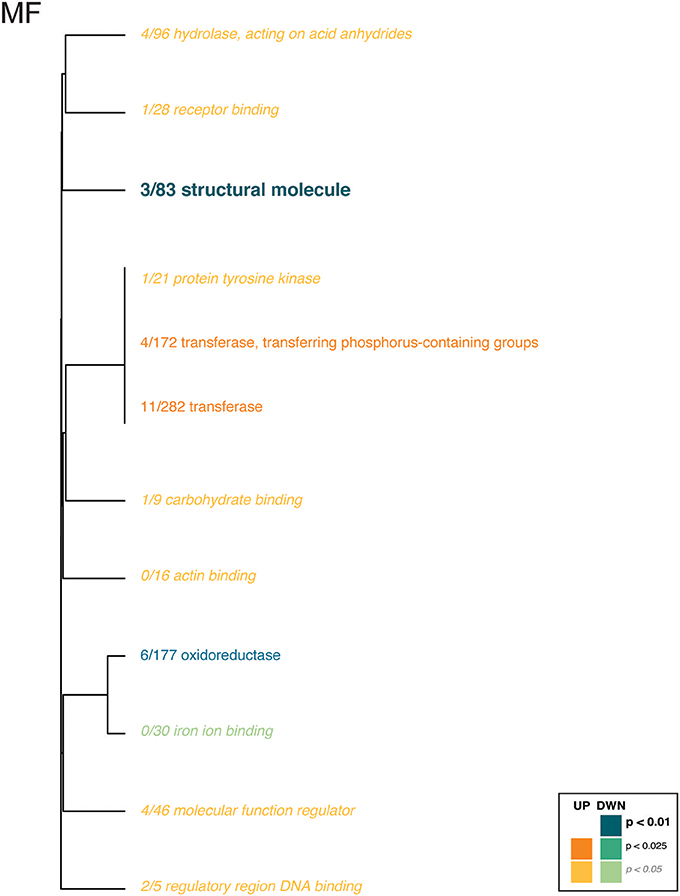 Frontiers | Host and Symbionts in Pocillopora damicornis