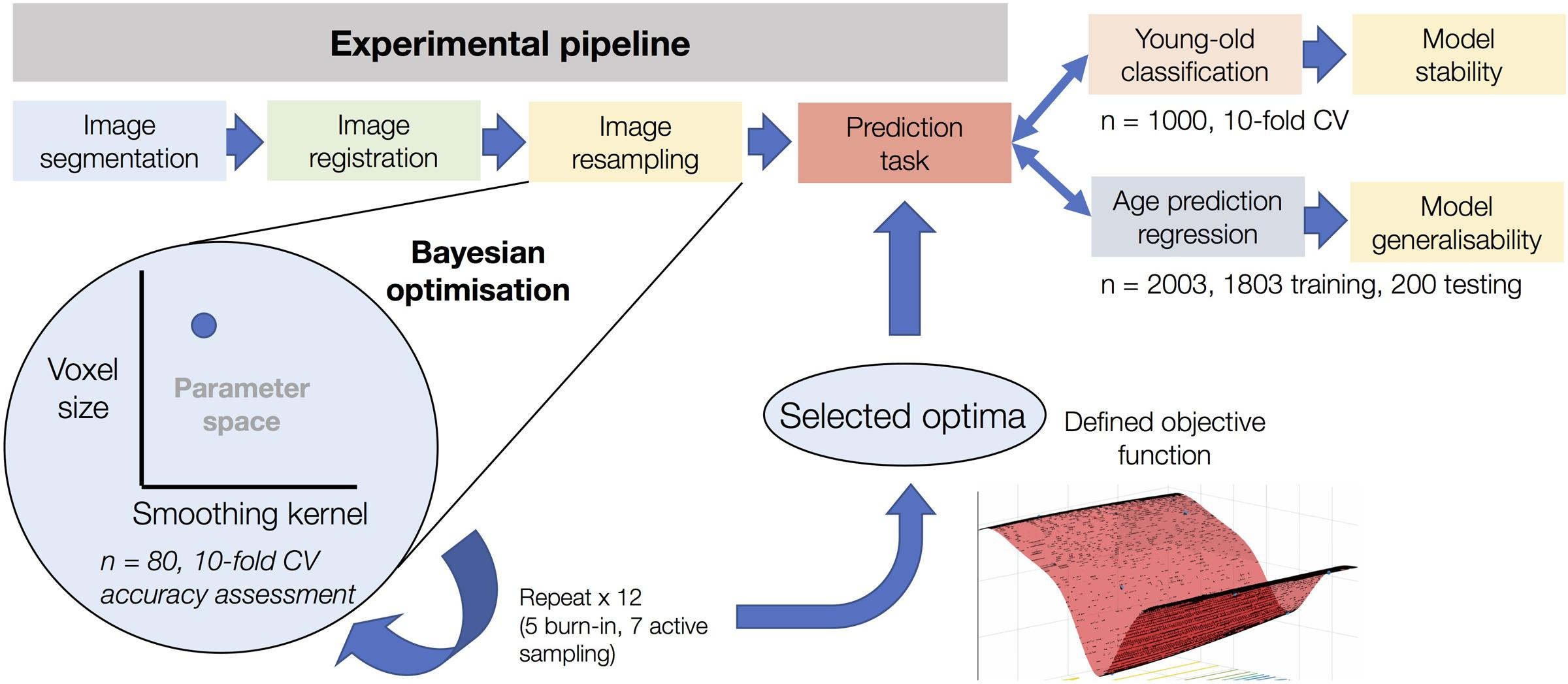 Frontiers | Bayesian Optimization for Neuroimaging Pre