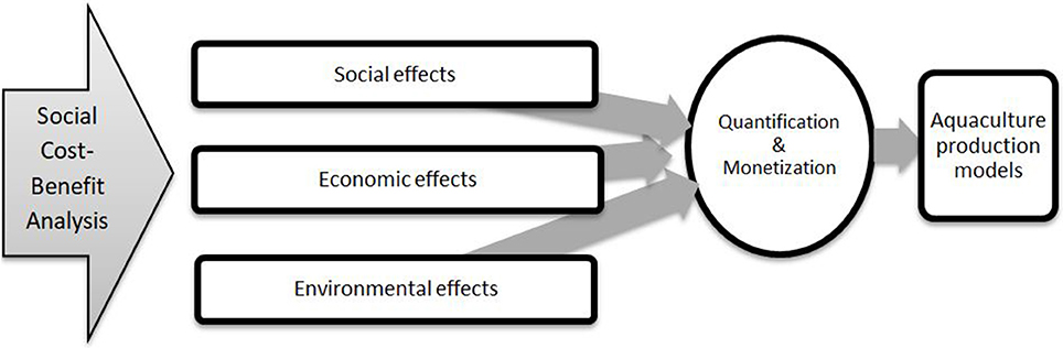 Frontiers | A Methodological Note for the Development of