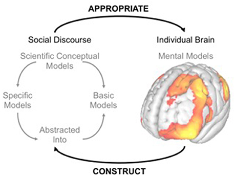 Frontiers | Toward a Neurobiological Basis for Understanding