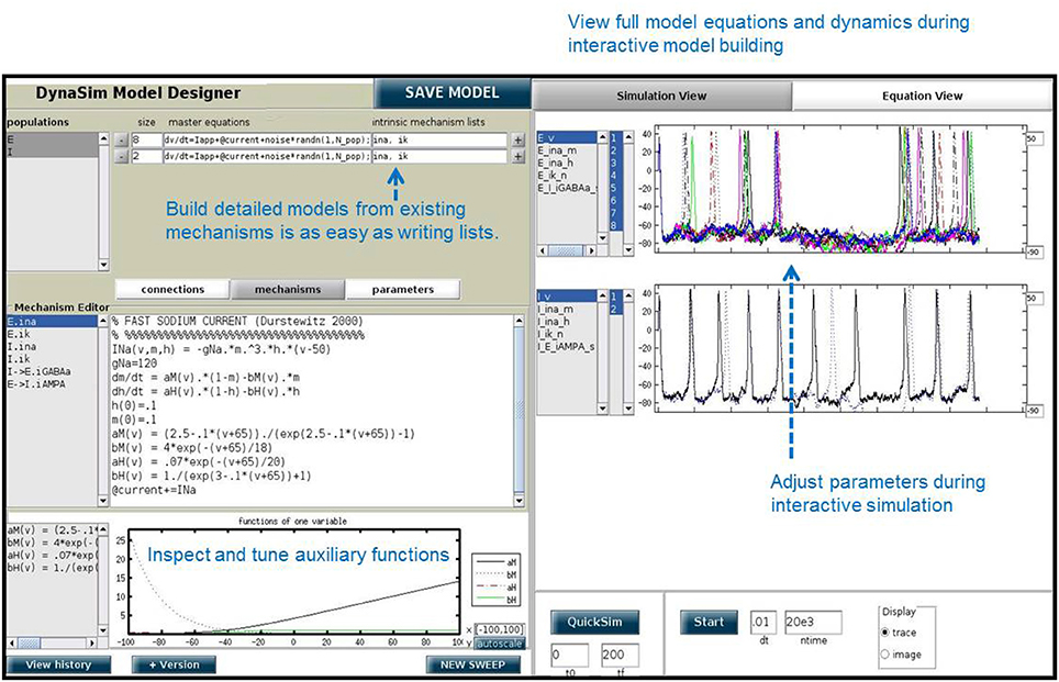Frontiers | DynaSim: A MATLAB Toolbox for Neural Modeling
