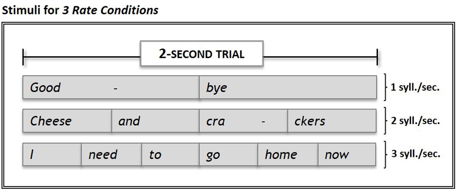 Frontiers   The Effect of Speech Repetition Rate on Neural