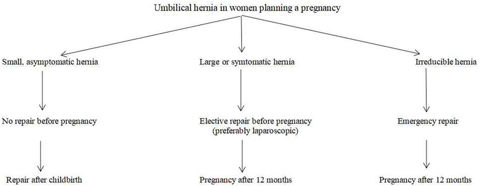 Frontiers | Umbilical Hernia Repair and Pregnancy: Before