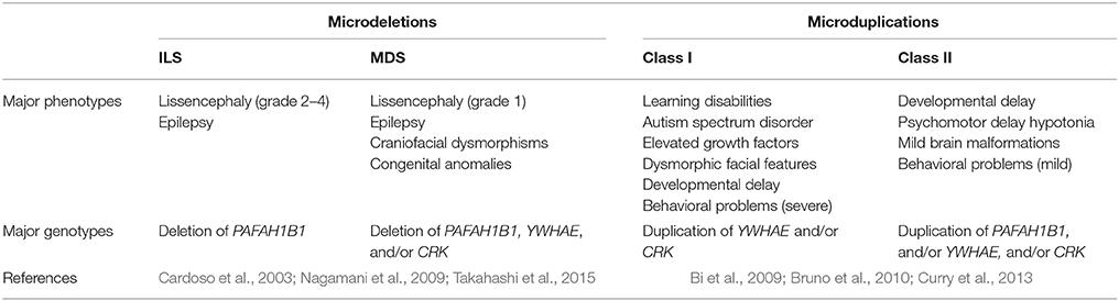 Frontiers | Neurodevelopmental Genetic Diseases Associated With