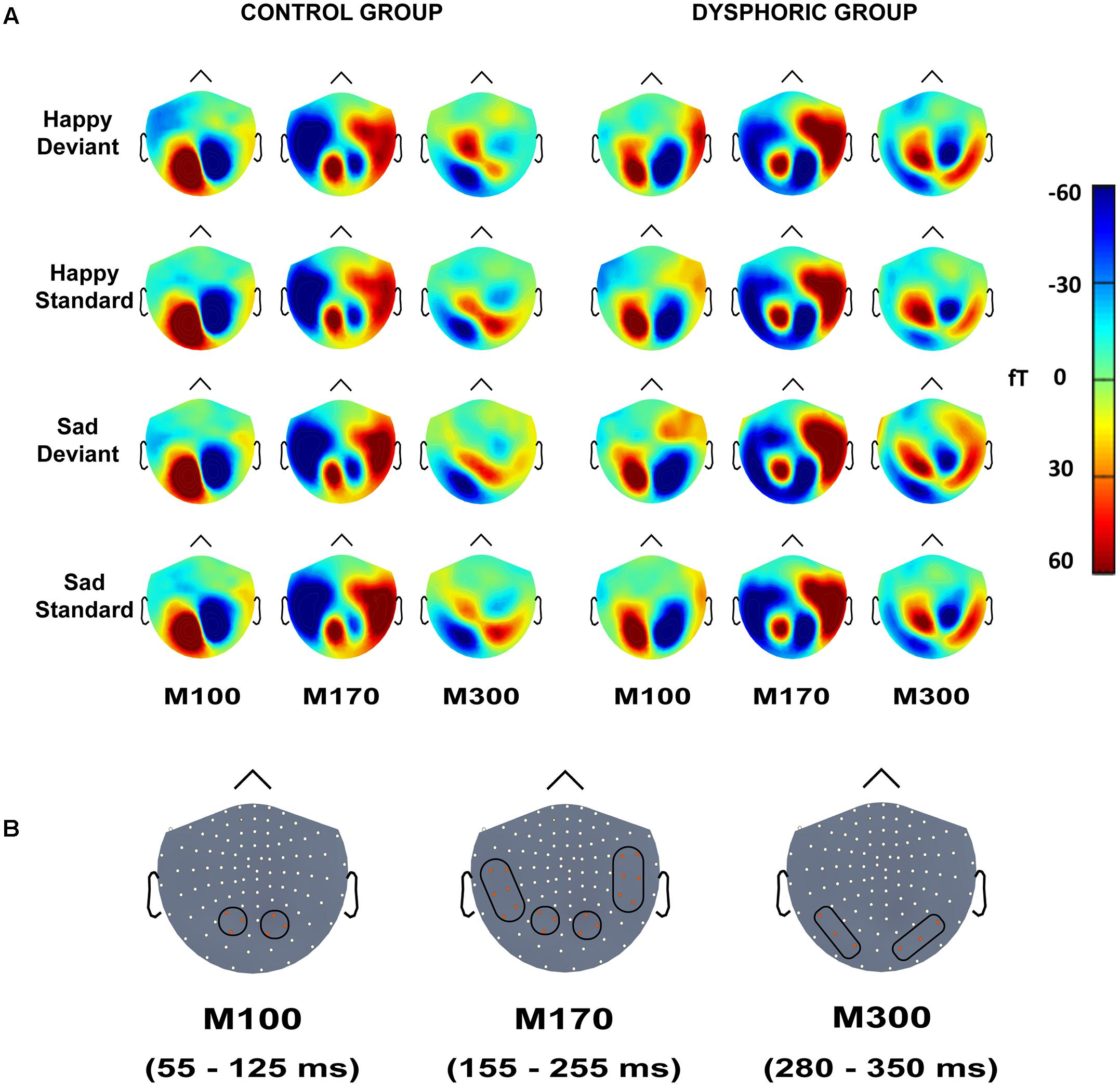 Frontiers | Automatic Processing of Changes in Facial Emotions in