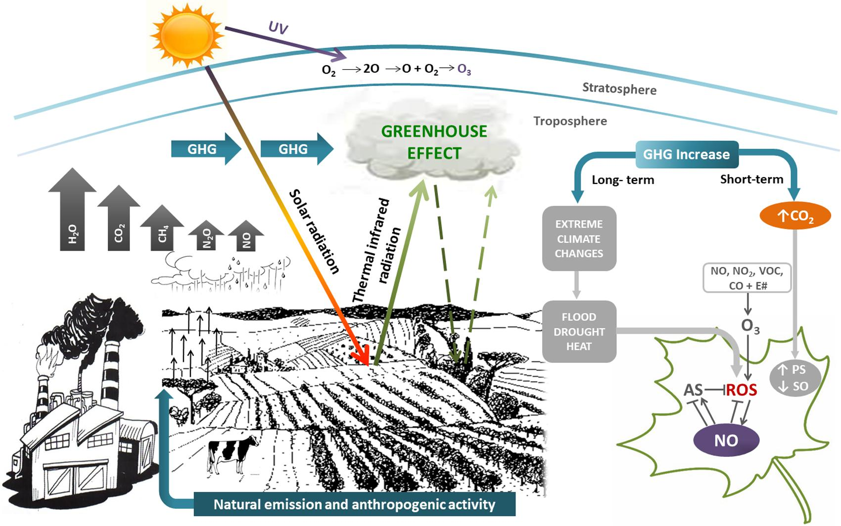 Frontiers climate change and the impact of greenhouse gasses frontiersin pooptronica Images