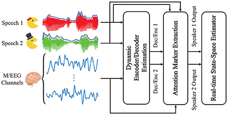 Frontiers | Real-Time Tracking of Selective Auditory Attention From
