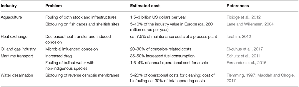 economic importance of corrosion