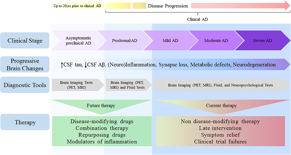 Could Modified Alzheimers Drug Treat >> Frontiers Challenges For Alzheimer S Disease Therapy Insights