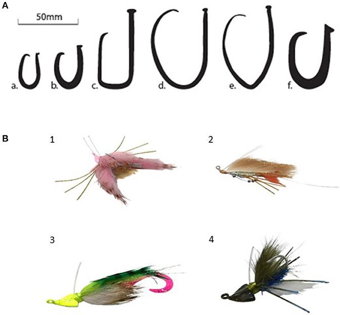 Play Trap Design Fishing Mesh Net No Need Hooks D1L