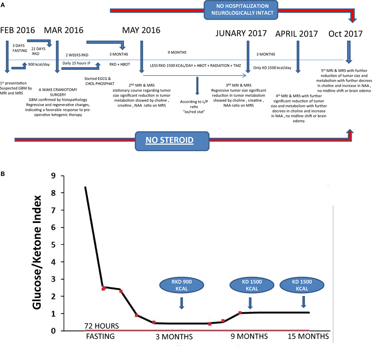 Frontiers | Management of Glioblastoma Multiforme in a