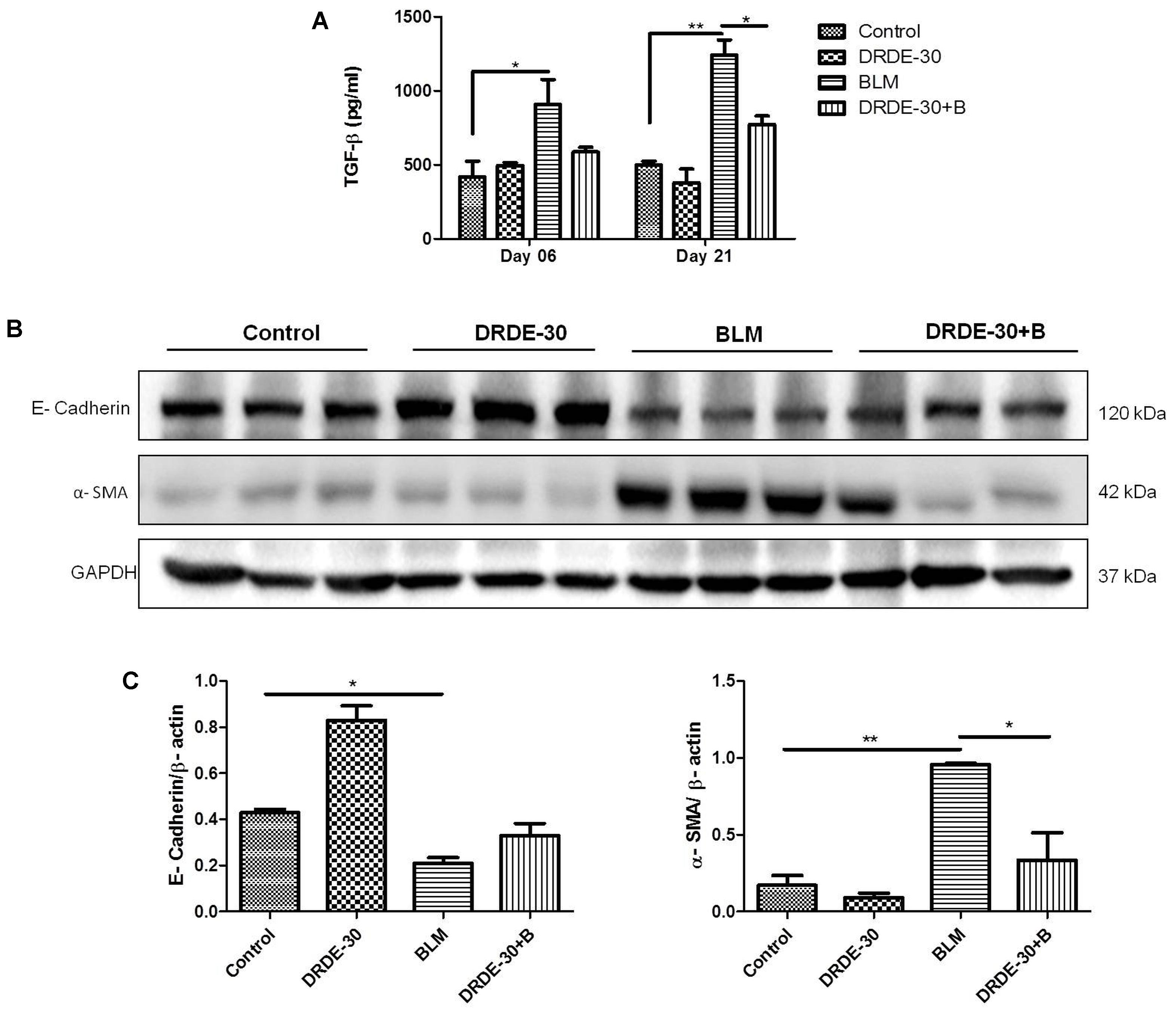 Frontiers Amifostine Analog Drde 30 Attenuates Bleomycin Induced Thread Color Organ Schematic