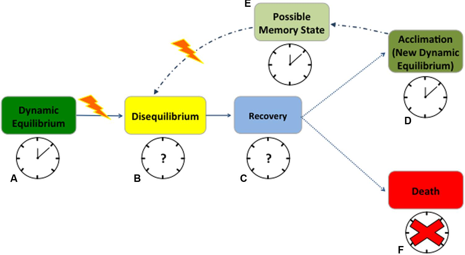 Frontiers | Circadian Rhythms and Redox State in Plants ... on