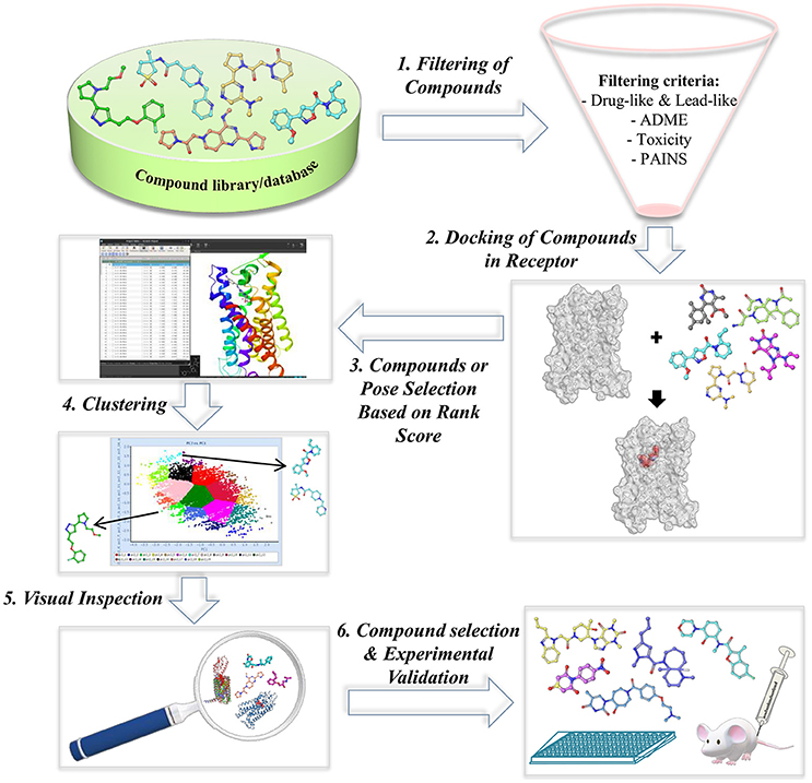 Frontiers Exploring G Protein Coupled Receptors Gpcrs Ligand Space Via Cheminformatics Approaches Impact On Rational Drug Design Pharmacology
