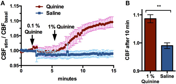 Frontiers | The Role of Quinine-Responsive Taste Receptor