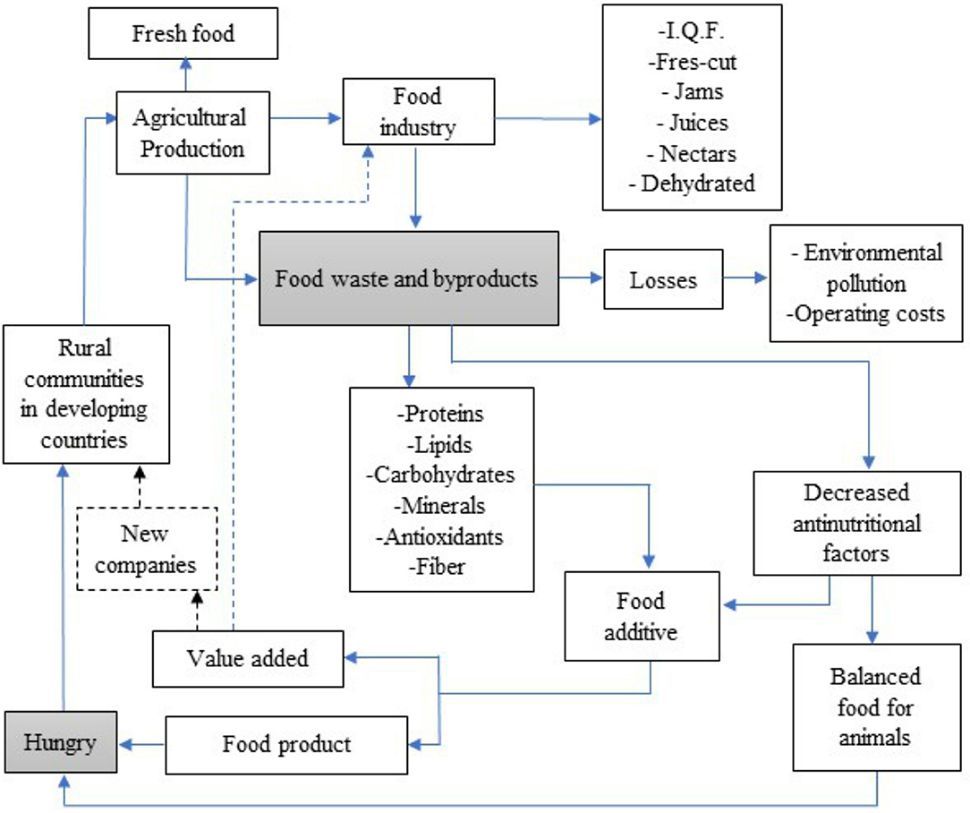 Frontiers | Food Waste and Byproducts: An Opportunity to