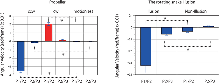 Frontiers   Illusory Motion Reproduced by Deep Neural Networks