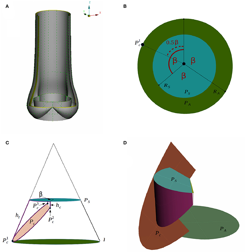 Frontiers | 3D Fluid-Structure Interaction Simulation of