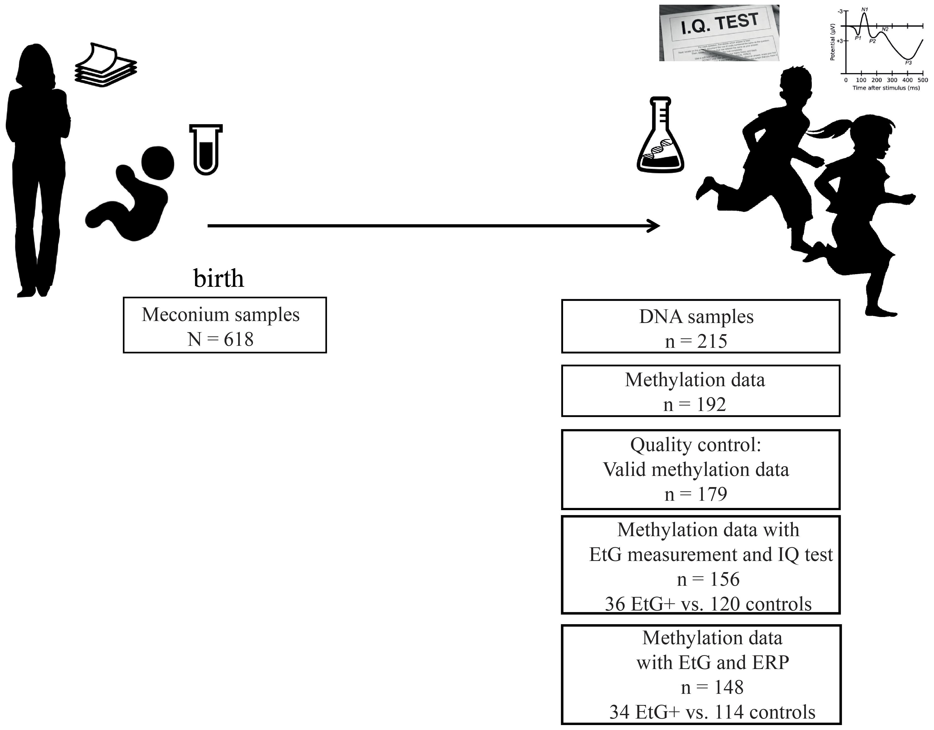 Frontiers Prenatal Alcohol Exposure Is Associated With Adverse Oliver 88 Wiring Diagram